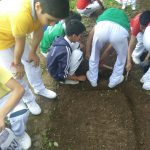 Agriculture Shimla Presidency School